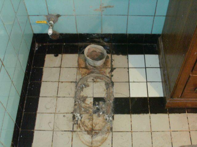 Toilet Flusher Broke
