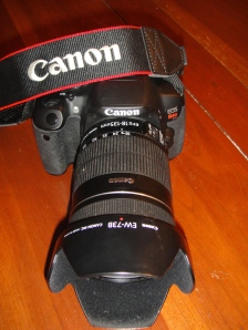 Canon EOS Rebel T4i  (plus a whole camera backpack full of the necessary accessories)