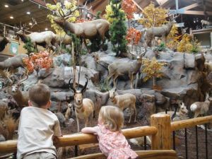 Cabela's is like a zoo...
