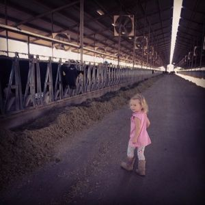Amelia LOVED the cows at the dairy…so. much.