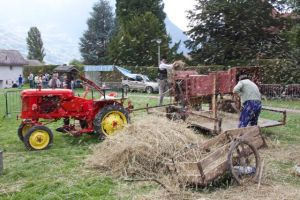 Over at the animal display - old farm equipment working hard...