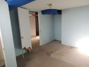 Basement bedroom 2, before - dogs ATE. THE. DOOR.