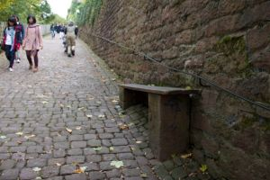 The steep hill up to the Heidelberg Castle - the bench is horizontal for reference